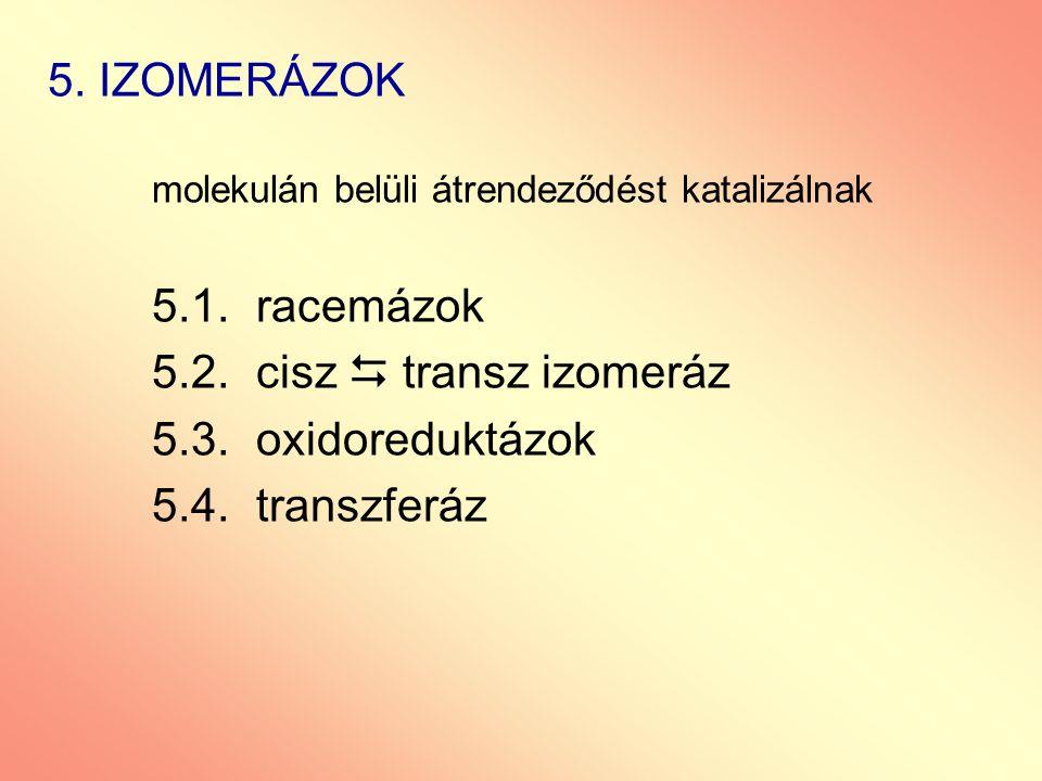 5. IZOMERÁZOK molekulán belüli átrendeződést katalizálnak 5.1.racemázok 5.2.cisz  transz izomeráz 5.3.oxidoreduktázok 5.4.transzferáz