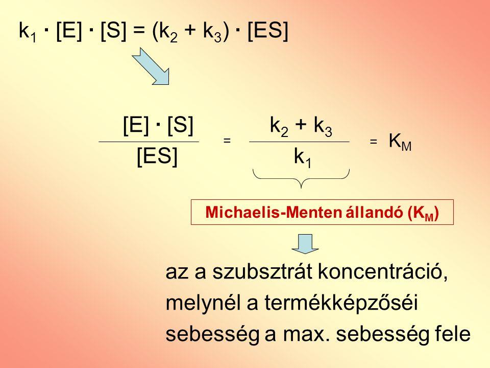 [E] · [S] k 2 + k 3 [ES] k 1 az a szubsztrát koncentráció, melynél a termékképzőséi sebesség a max. sebesség fele = = K M Michaelis-Menten állandó (K
