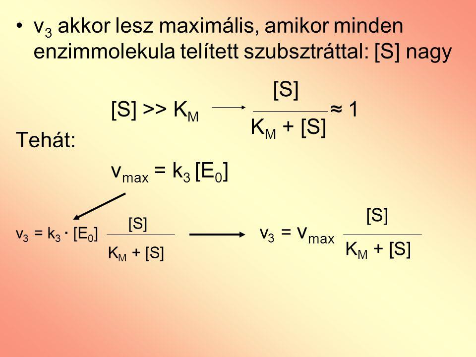v 3 akkor lesz maximális, amikor minden enzimmolekula telített szubsztráttal: [S] nagy [S] >> K M ≈ 1 Tehát: v max = k 3 [E 0 ] v 3 = k 3 · [E 0 ] v 3