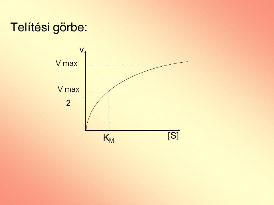 Telítési görbe: v [S] V max 2 KMKM