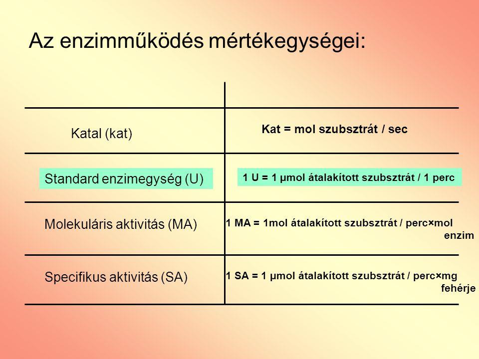 Az enzimműködés mértékegységei: Katal (kat) Standard enzimegység (U) Molekuláris aktivitás (MA) Specifikus aktivitás (SA) Kat = mol szubsztrát / sec 1