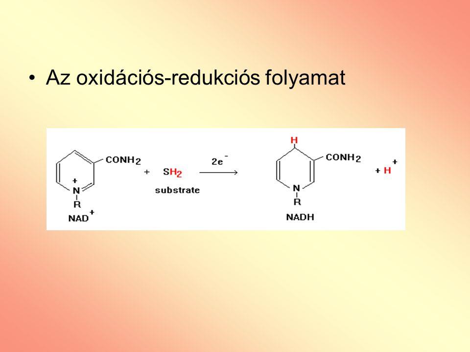 Az oxidációs-redukciós folyamat