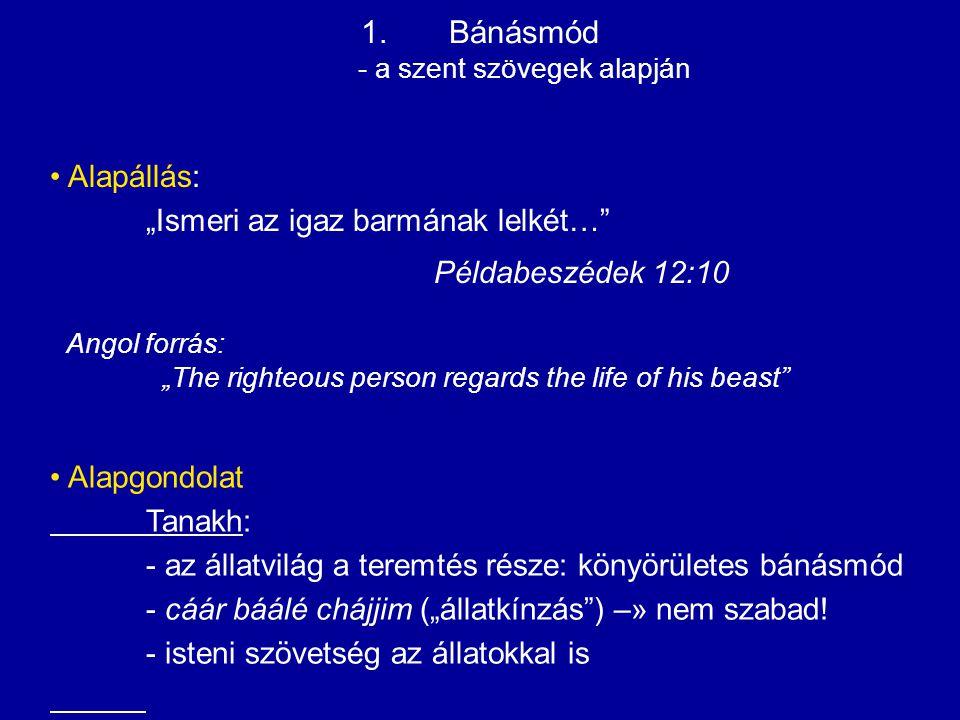 További gondolatok a szent szövegekből:  Talmud: Ne okozz fájdalmat az állatoknak.
