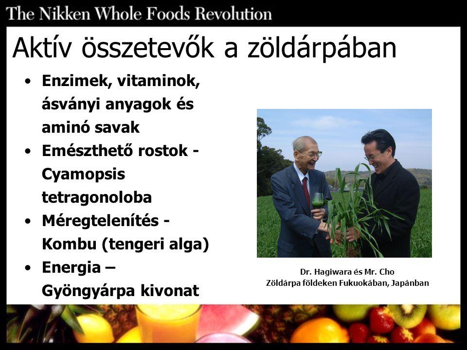 Aktív összetevők a zöldárpában Dr. Hagiwara és Mr. Cho Zöldárpa földeken Fukuokában, Japánban Enzimek, vitaminok, ásványi anyagok és aminó savak Emész