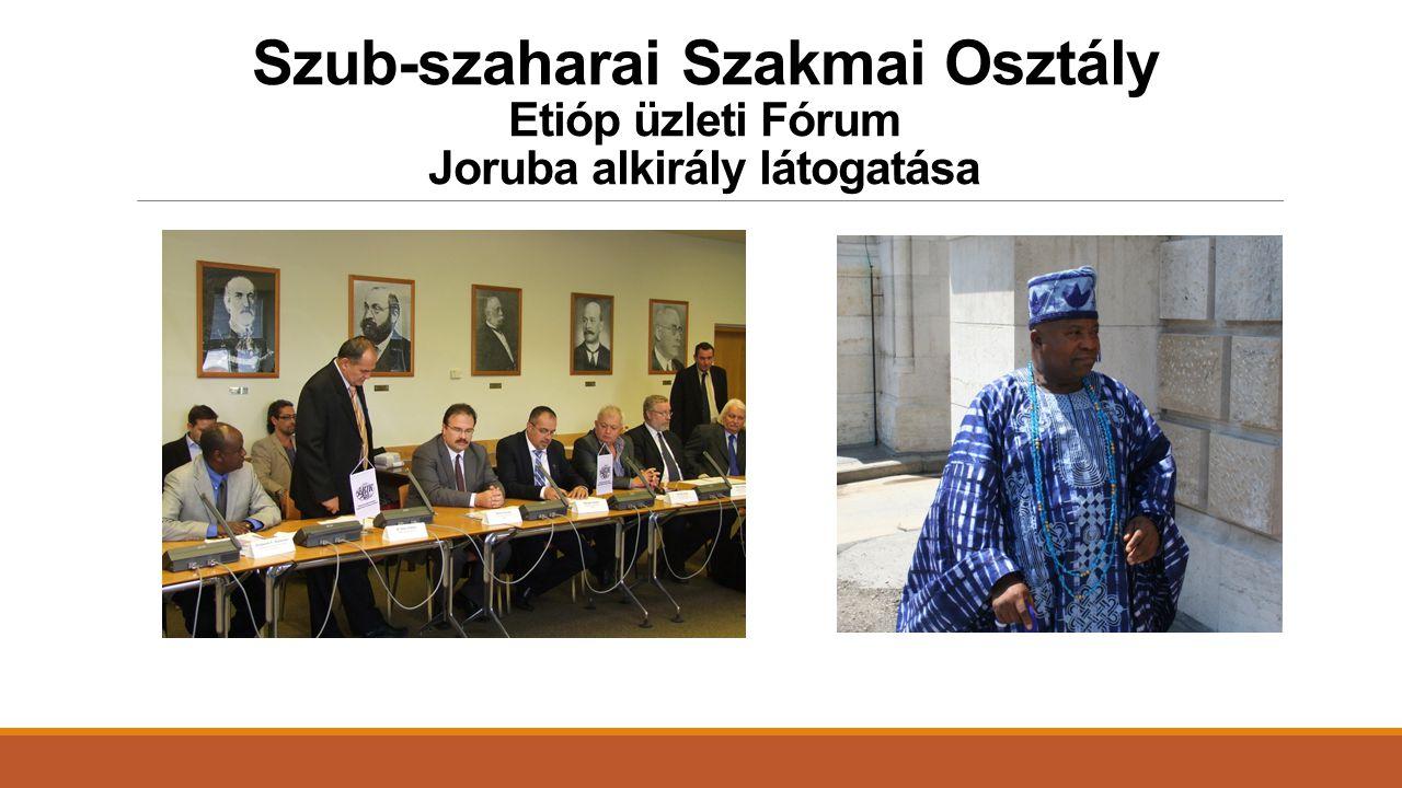Szub-szaharai Szakmai Osztály Etióp üzleti Fórum Joruba alkirály látogatása