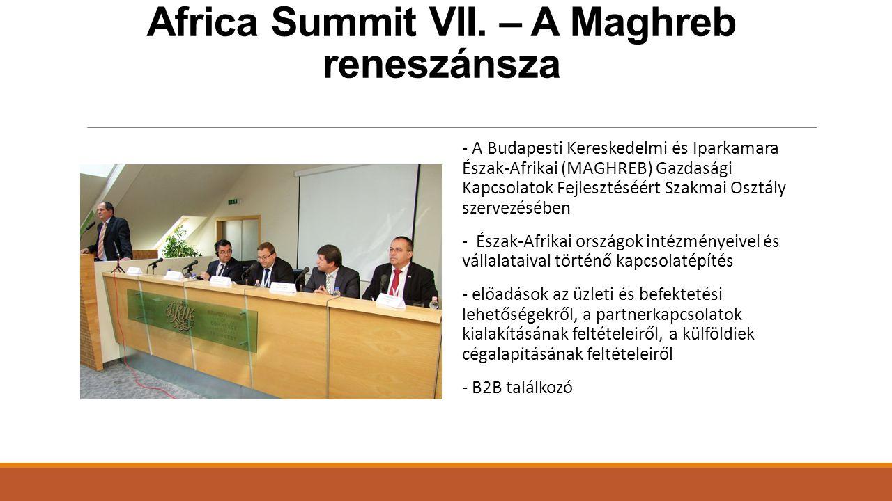 Africa Summit VII.