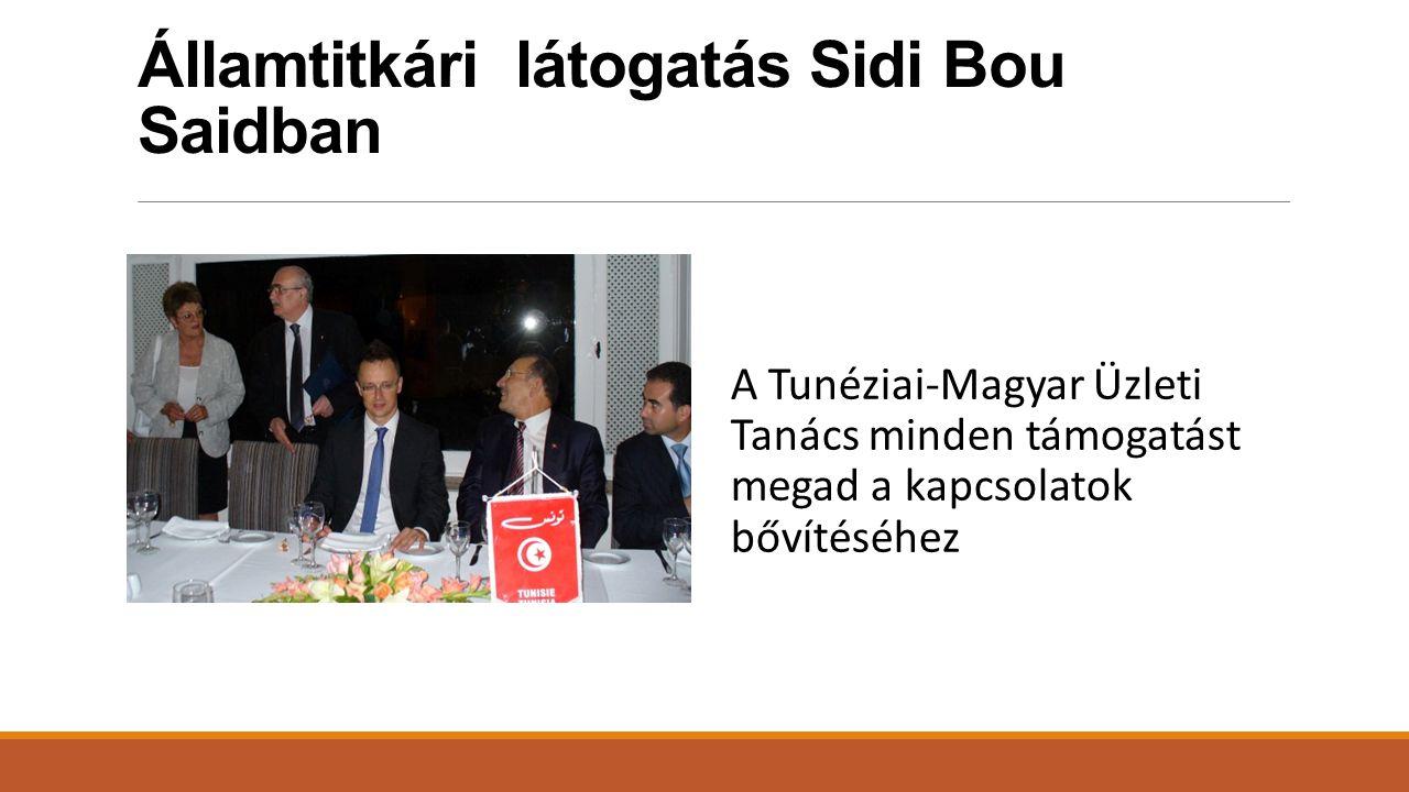 Államtitkári látogatás Sidi Bou Saidban A Tunéziai-Magyar Üzleti Tanács minden támogatást megad a kapcsolatok bővítéséhez