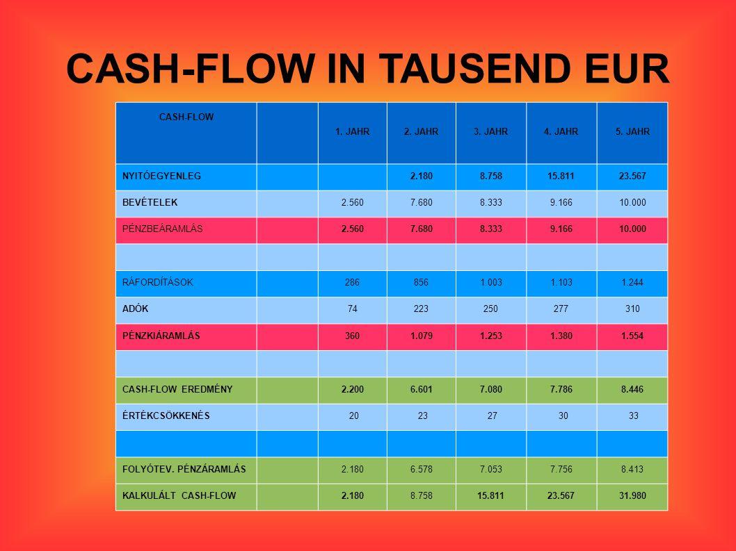 CASH-FLOW IN TAUSEND EUR CASH-FLOW 1.JAHR2. JAHR3.