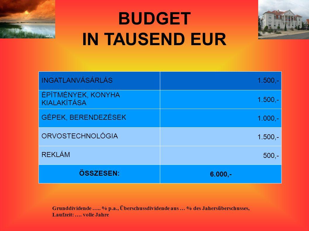 BUDGET IN TAUSEND EUR Grunddividende …..