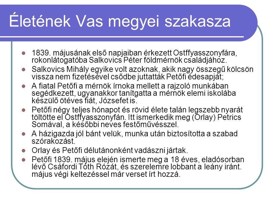 Életének Vas megyei szakasza 1839. májusának első napjaiban érkezett Ostffyasszonyfára, rokonlátogatóba Salkovics Péter földmérnök családjához. Salkov