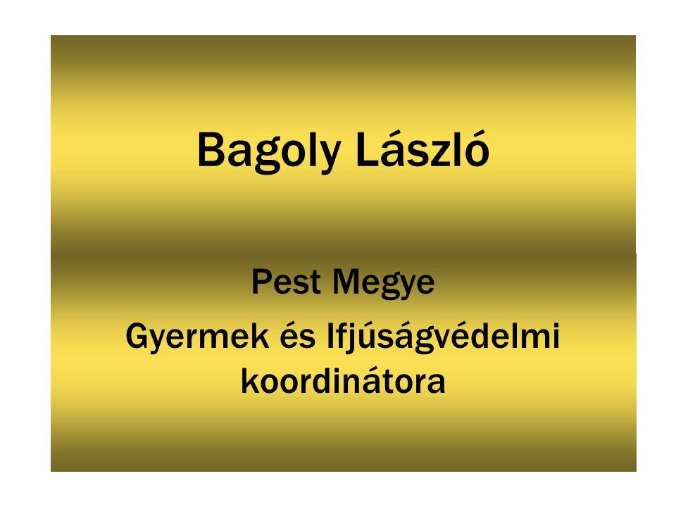 Bagoly László Pest Megye Gyermek és Ifjúságvédelmi koordinátora