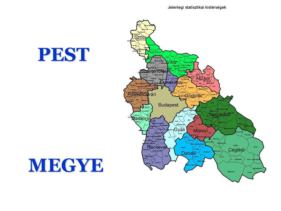 PEST PEST MEGYE