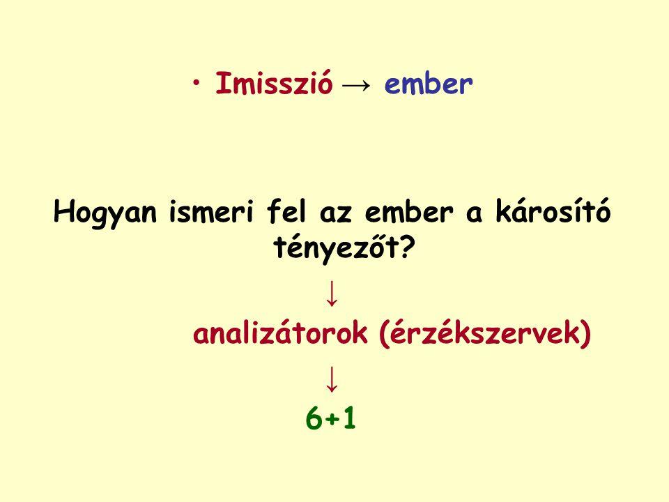 Imisszió → ember Hogyan ismeri fel az ember a károsító tényezőt? ↓ analizátorok (érzékszervek) ↓ 6+1