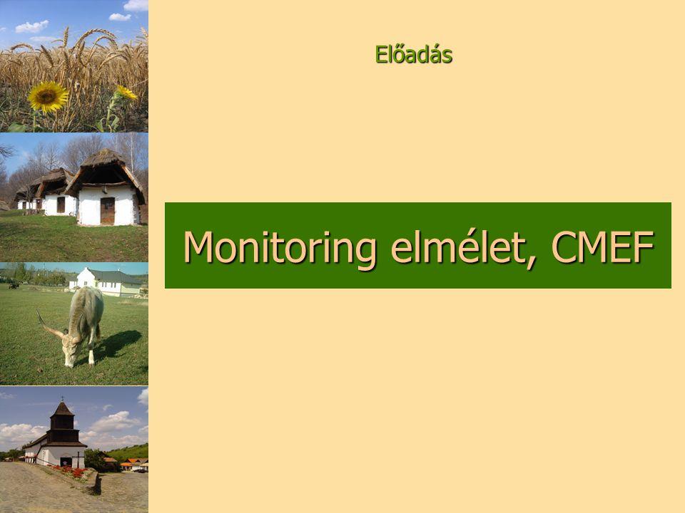 A program céljainak számszerűsítésére használhatóak. Monitoring indikátorok (1)