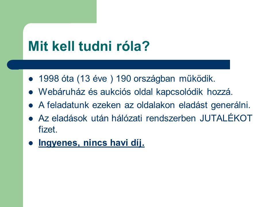 Mit kell tudni róla. 1998 óta (13 éve ) 190 országban működik.