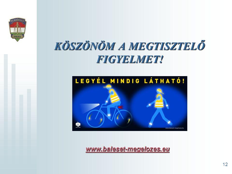 12 KÖSZÖNÖM A MEGTISZTELŐ FIGYELMET! www.baleset-megelozes.eu