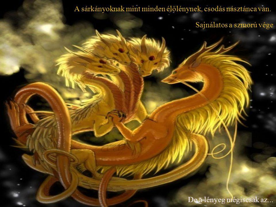Hiszen ahhoz hogy kissárkány születhessen A hím egyednek fel kell áldoznia magát