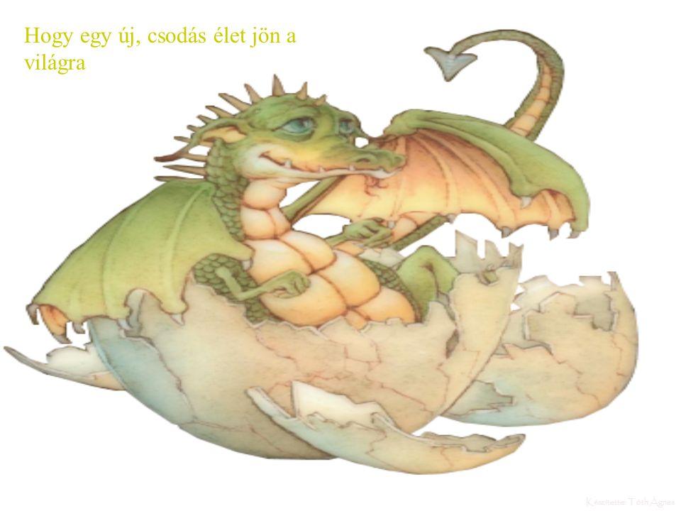 A sárkányoknak mint minden élőlénynek, csodás násztánca van. Sajnálatos a szmorú vége De a lényeg mégiscsak az...