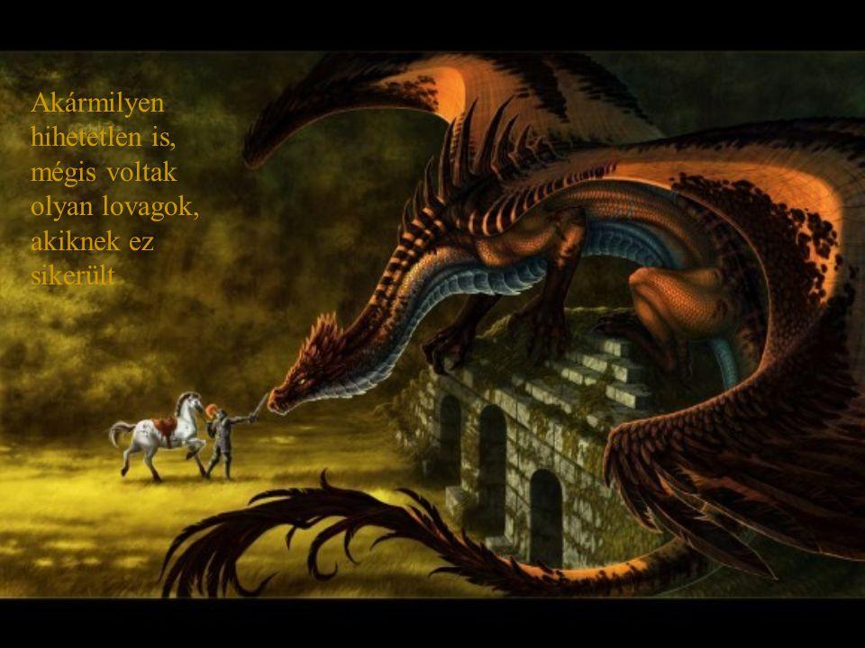 Voltak bátor Mágusok, illetve harcosok, akik megpróbálták megszelídíteni eme titokzatos lényeket, de a legtöbben kudarcot vallottak. Nagyon nagy kocká
