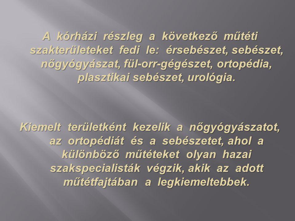 A kórházi részleg a következő műtéti szakterületeket fedi le: érsebészet, sebészet, nőgyógyászat, fül-orr-gégészet, ortopédia, plasztikai sebészet, urológia.
