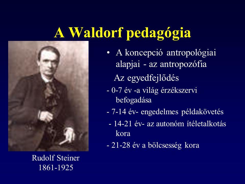 A Waldorf pedagógia A koncepció antropológiai alapjai - az antropozófia Az egyedfejlődés - 0-7 év -a világ érzékszervi befogadása - 7-14 év- engedelme