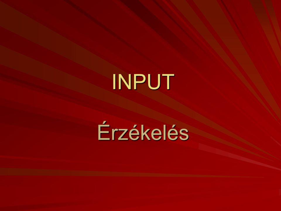 input Információ feldolgozás Tárolt információ output