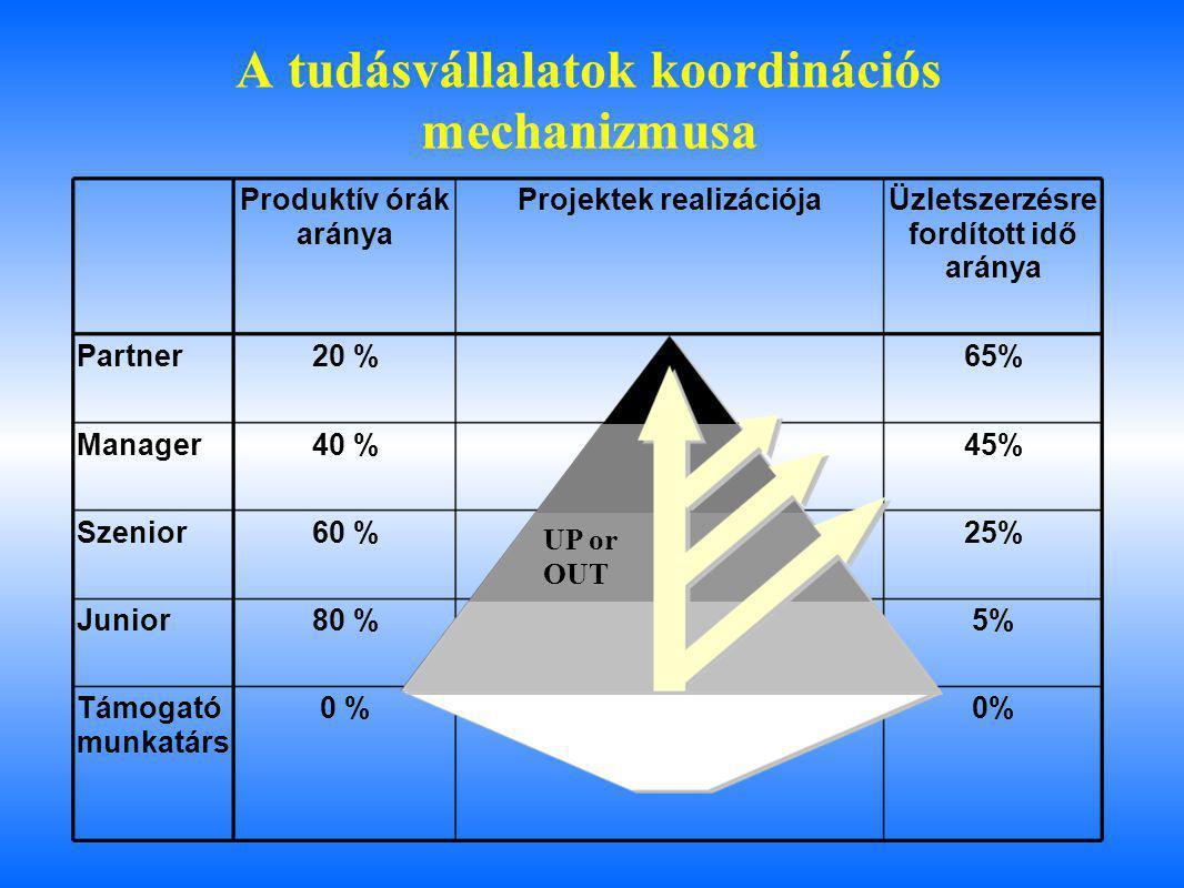 A tudásvállalatok koordinációs mechanizmusa Produktív órák aránya Projektek realizációjaÜzletszerzésre fordított idő aránya Partner20 %65% Manager40 %