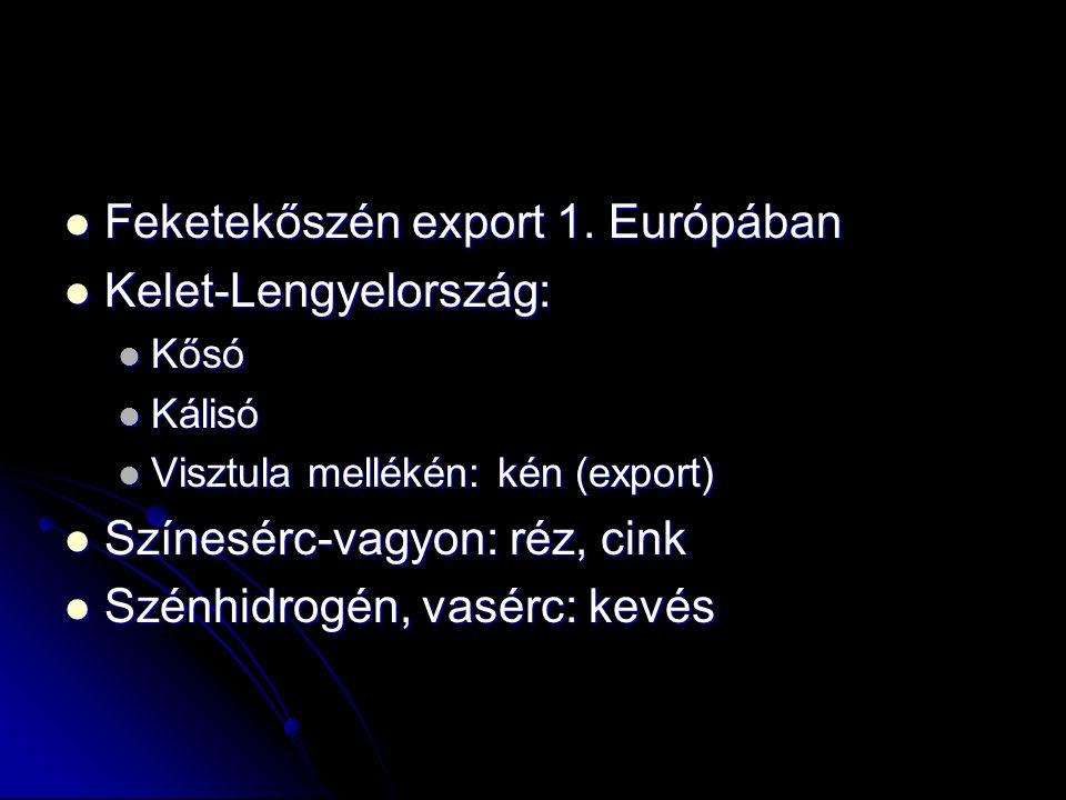 Feketekőszén export 1. Európában Feketekőszén export 1. Európában Kelet-Lengyelország: Kelet-Lengyelország: Kősó Kősó Kálisó Kálisó Visztula mellékén: