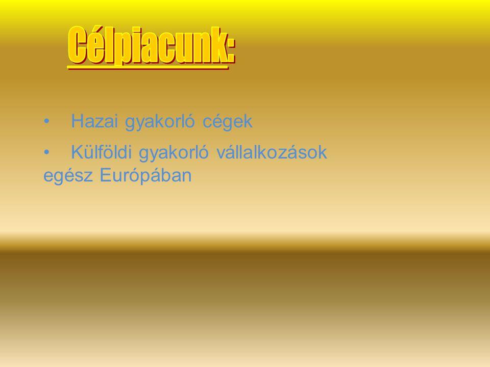 Külföldi gyakorló vállalkozások egész Európában Hazai gyakorló cégek