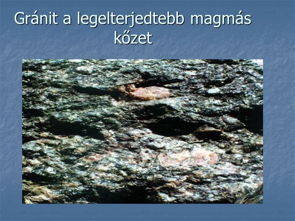Szerves eredetű üledékek Akkor keletkeznek, ha az elhalt szerves anyag oxigénszegény környezetben nem bomlik el.