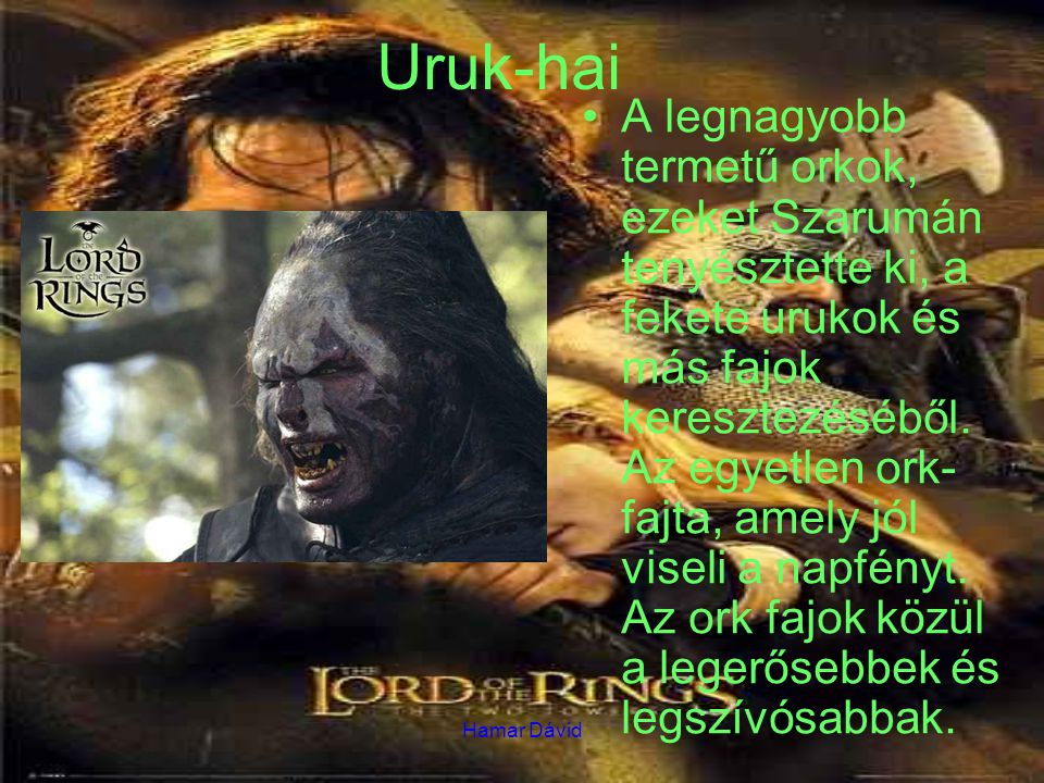 Hamar Dávid Uruk-hai A legnagyobb termetű orkok, ezeket Szarumán tenyésztette ki, a fekete urukok és más fajok keresztezéséből. Az egyetlen ork- fajta