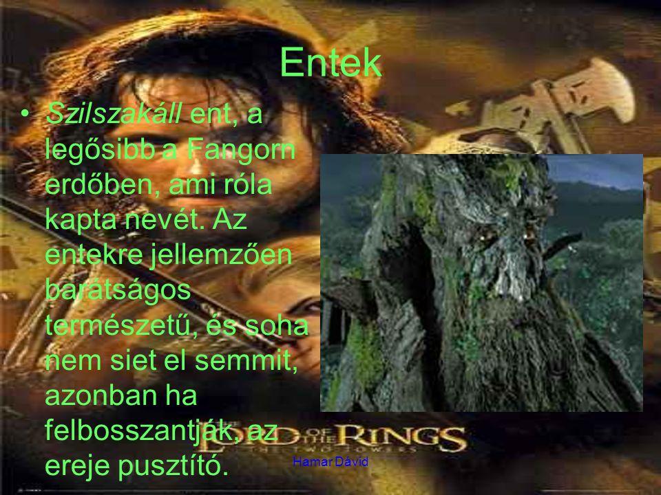 Hamar Dávid Entek Szilszakáll ent, a legősibb a Fangorn erdőben, ami róla kapta nevét. Az entekre jellemzően barátságos természetű, és soha nem siet e