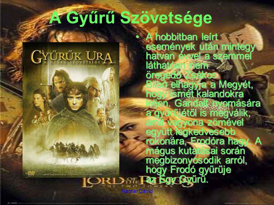 Hamar Dávid A Gyűrű Szövetsége A hobbitban leírt események után mintegy hatvan évvel a szemmel láthatóan nem öregedő Zsákos Bilbó elhagyja a Megyét, hogy ismét kalandokra leljen.