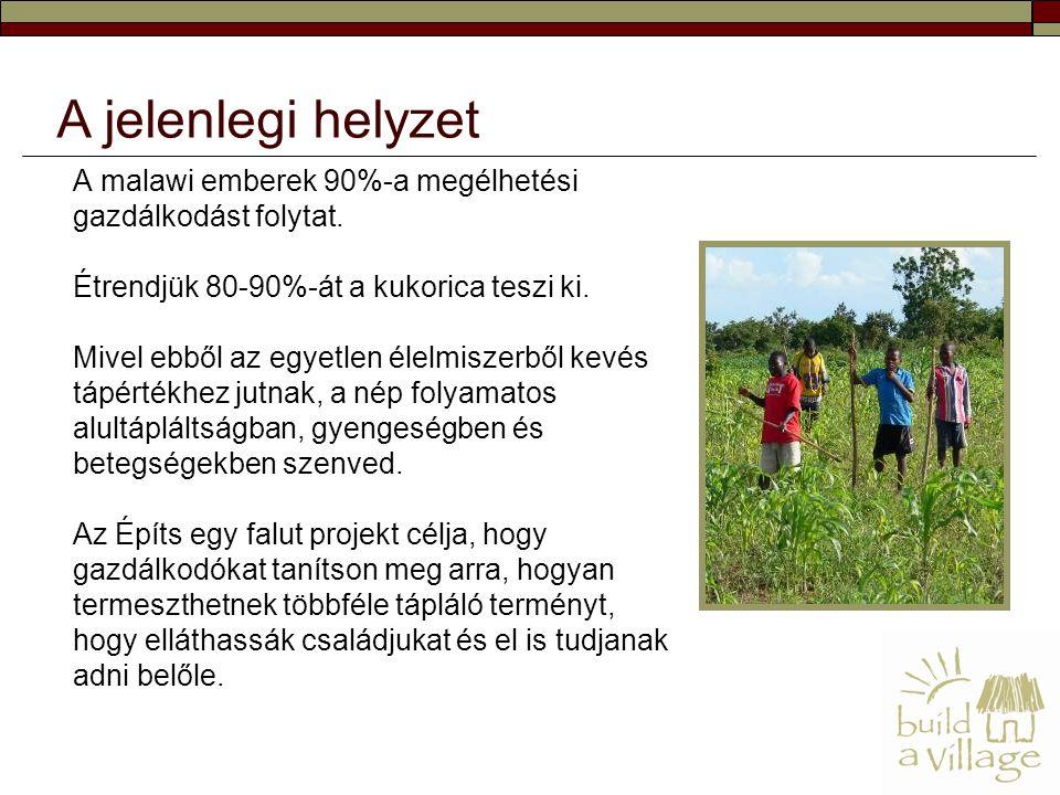 A malawi emberek 90%-a megélhetési gazdálkodást folytat. Étrendjük 80-90%-át a kukorica teszi ki. Mivel ebből az egyetlen élelmiszerből kevés tápérték