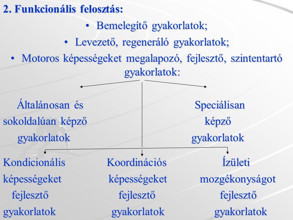 2. Funkcionális felosztás: Bemelegítő gyakorlatok;Bemelegítő gyakorlatok; Levezető, regeneráló gyakorlatok;Levezető, regeneráló gyakorlatok; Motoros k