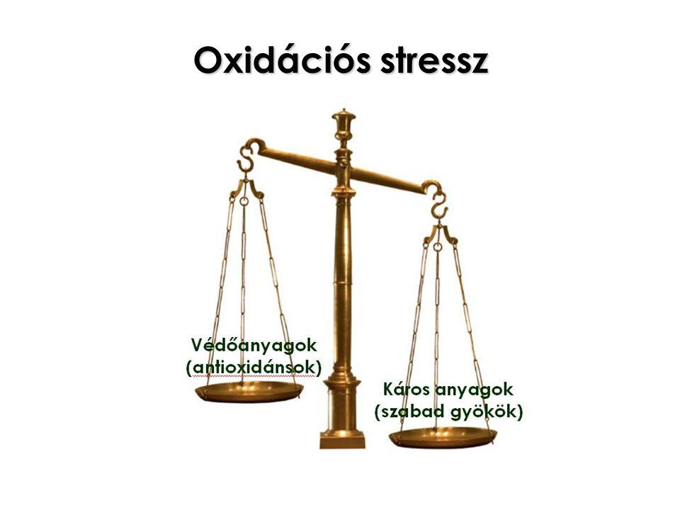 Oxidációs stressz