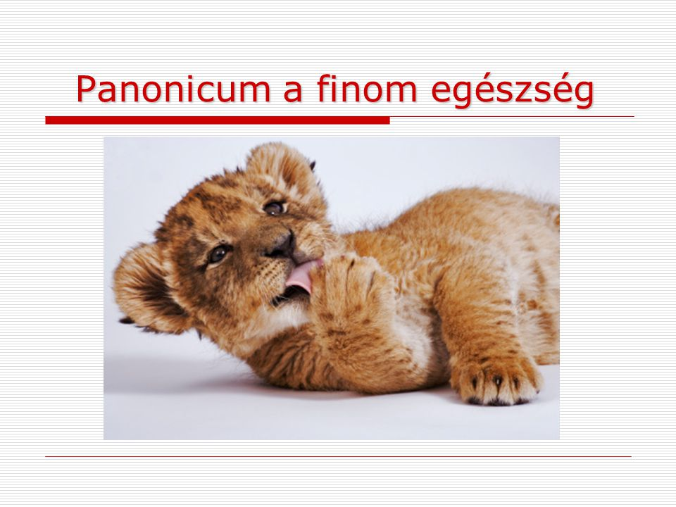 Panonicum a finom egészség Panonicum a finom egészség