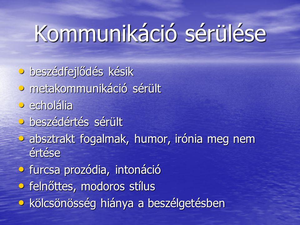 Kommunikáció sérülése beszédfejlődés késik beszédfejlődés késik metakommunikáció sérült metakommunikáció sérült echolália echolália beszédértés sérült