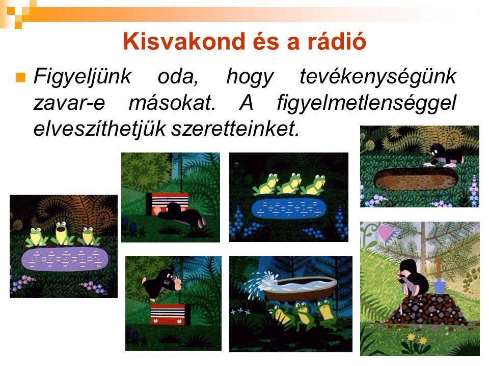Kisvakond és a rádió Figyeljünk oda, hogy tevékenységünk zavar-e másokat. A figyelmetlenséggel elveszíthetjük szeretteinket.
