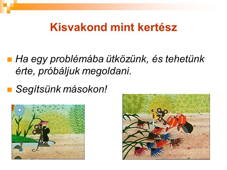 Kisvakond mint kertész Ha egy problémába ütközünk, és tehetünk érte, próbáljuk megoldani. Segítsünk másokon!