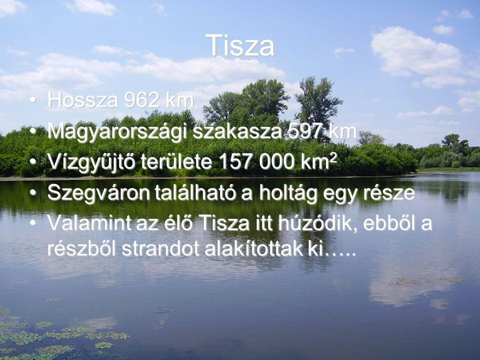 Tisza Hossza 962 kmHossza 962 km Magyarországi szakasza 597 kmMagyarországi szakasza 597 km Vízgyűjtő területe 157 000 km 2Vízgyűjtő területe 157 000