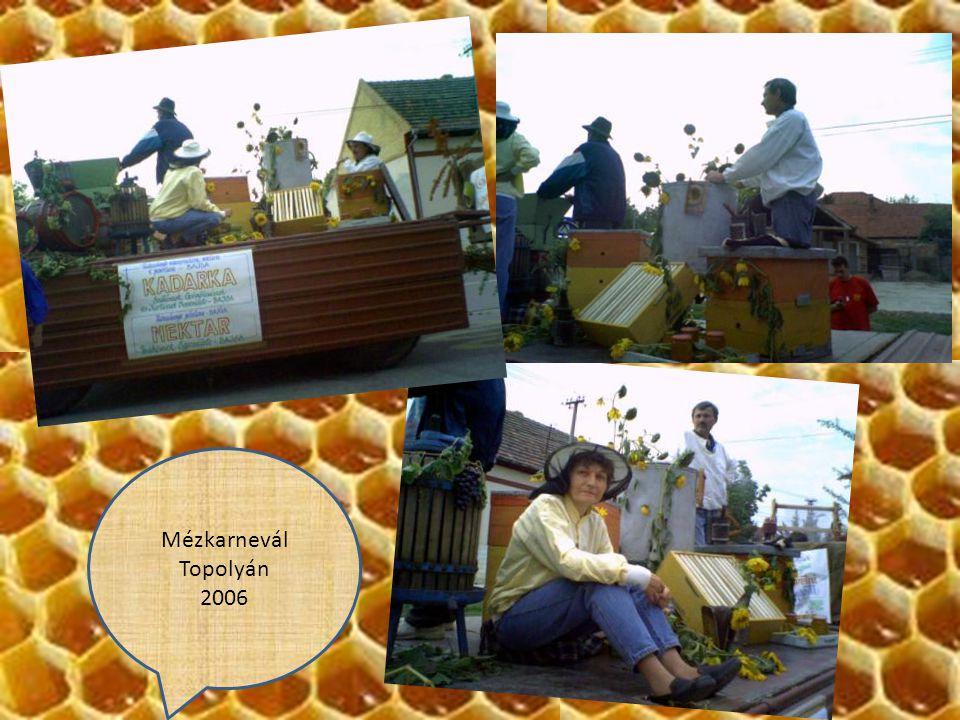 Állattenyésztési napok 2008.május 3. Nyegosevó
