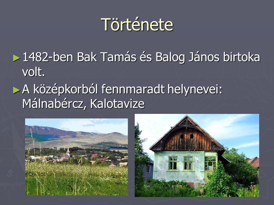 Története ► 1482-ben Bak Tamás és Balog János birtoka volt. ► A középkorból fennmaradt helynevei: Málnabércz, Kalotavize