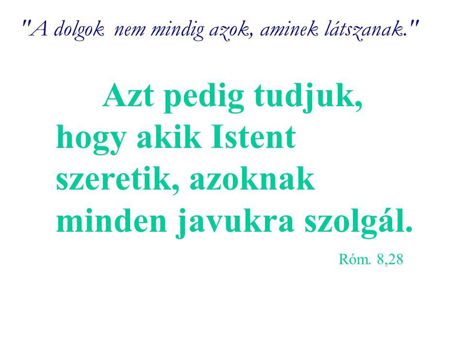 A dolgoknem mindig azok, aminek látszanak. Azt pedig tudjuk, hogy akik Istent szeretik, azoknak minden javukra szolgál.