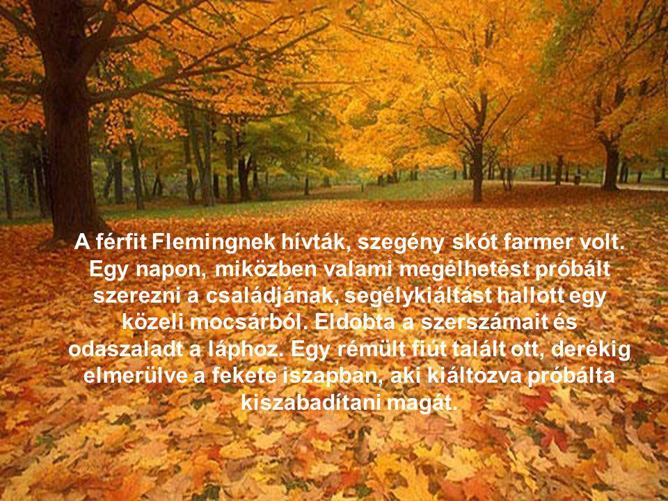 A férfit Flemingnek hívták, szegény skót farmer volt.
