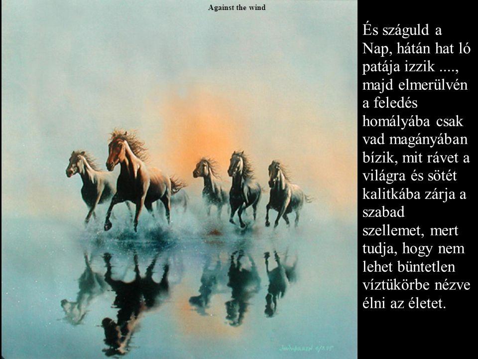 Against the wind És száguld a Nap, hátán hat ló patája izzik...., majd elmerülvén a feledés homályába csak vad magányában bízik, mit rávet a világra és sötét kalitkába zárja a szabad szellemet, mert tudja, hogy nem lehet büntetlen víztükörbe nézve élni az életet.