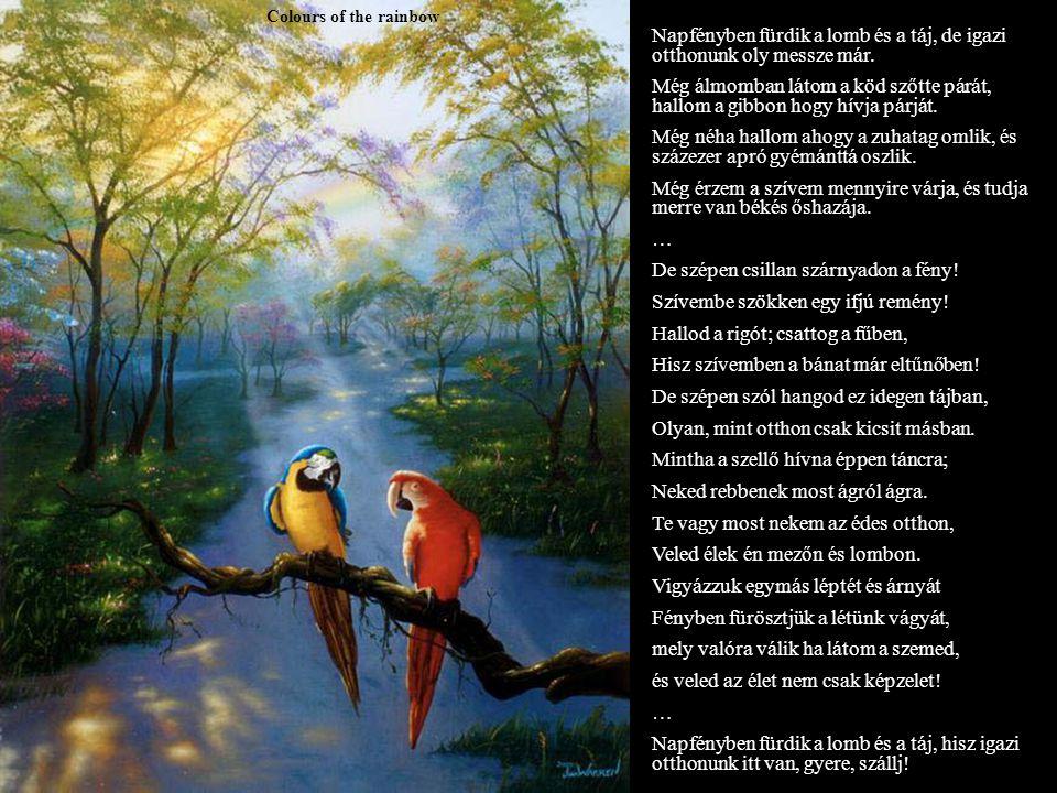 Colours of the rainbow Napfényben fürdik a lomb és a táj, de igazi otthonunk oly messze már.