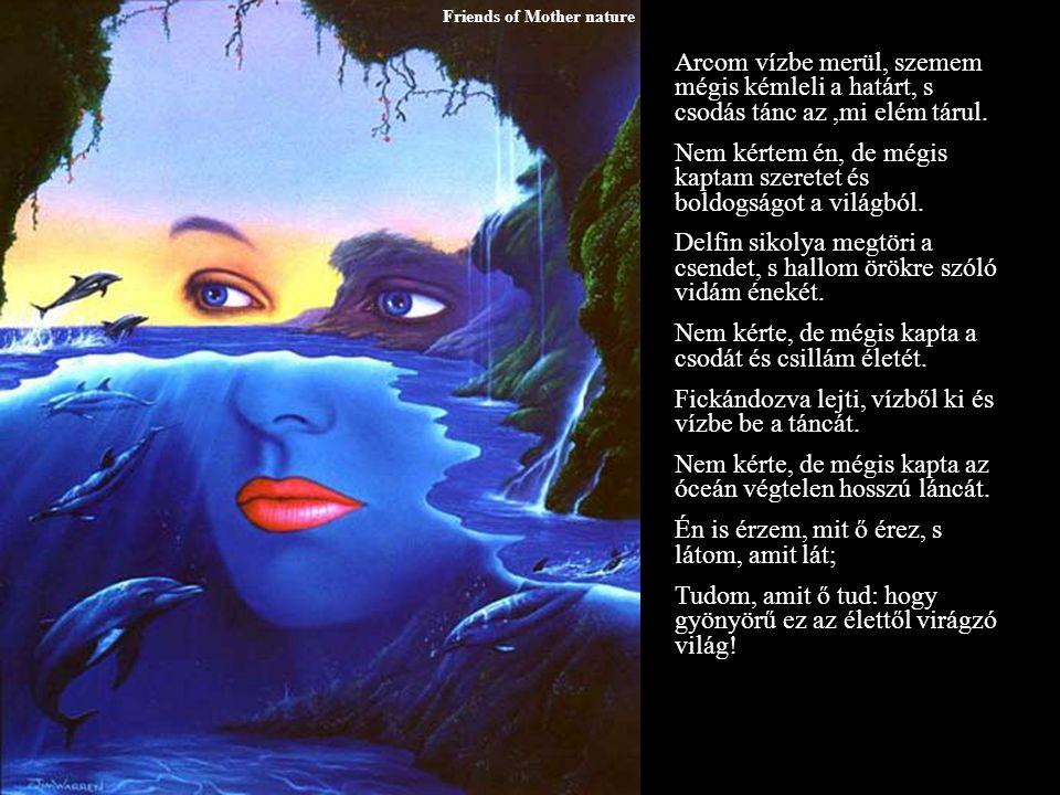Friends of Mother nature Arcom vízbe merül, szemem mégis kémleli a határt, s csodás tánc az,mi elém tárul.