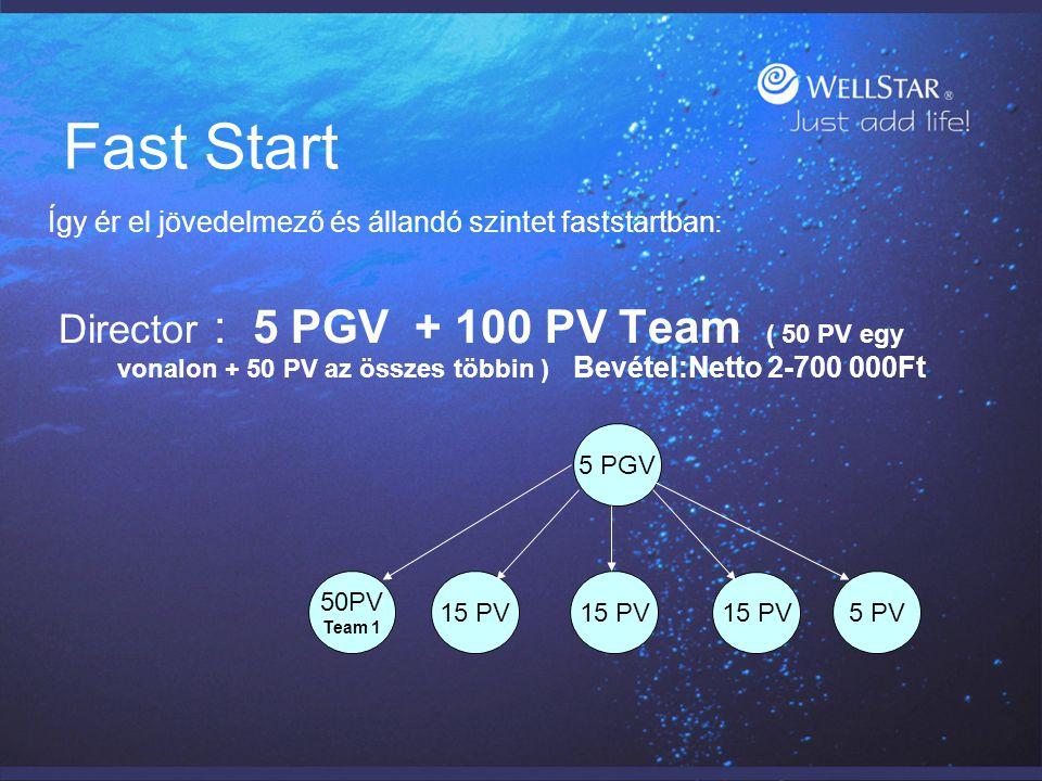 Fast Start Így ér el jövedelmező és állandó szintet faststartban: Director : 5 PGV + 100 PV Team ( 50 PV egy vonalon + 50 PV az összes többin ) Bevéte