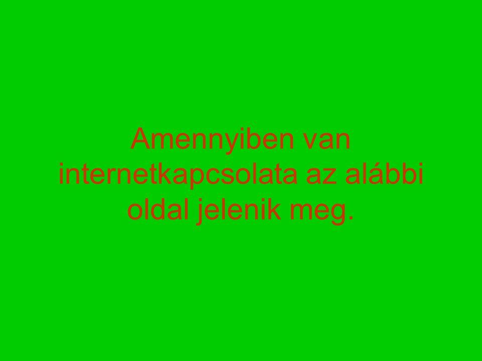Amennyiben van internetkapcsolata az alábbi oldal jelenik meg.